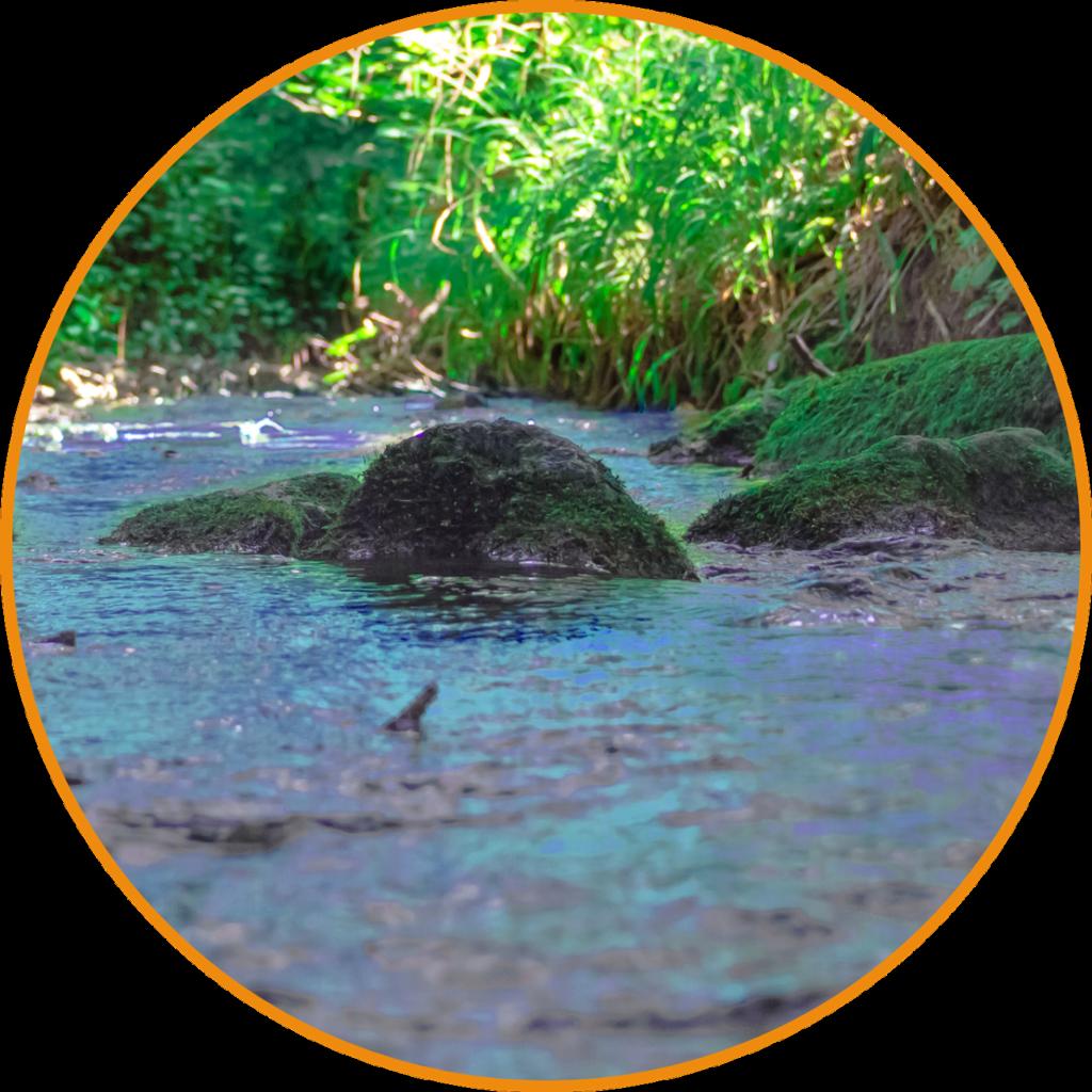 Stein im Fluss